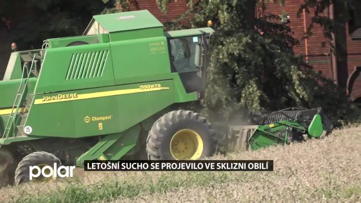 Letošní sucho se projevilo ve sklizni obilí