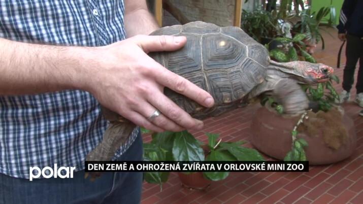 Den Země a ohrožená zvířata v orlovské mini zoo