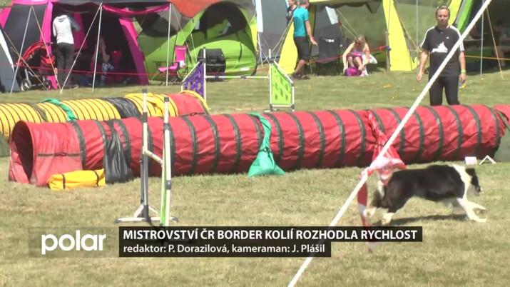Mistrovství ČR border kolií rozhodla rychlost